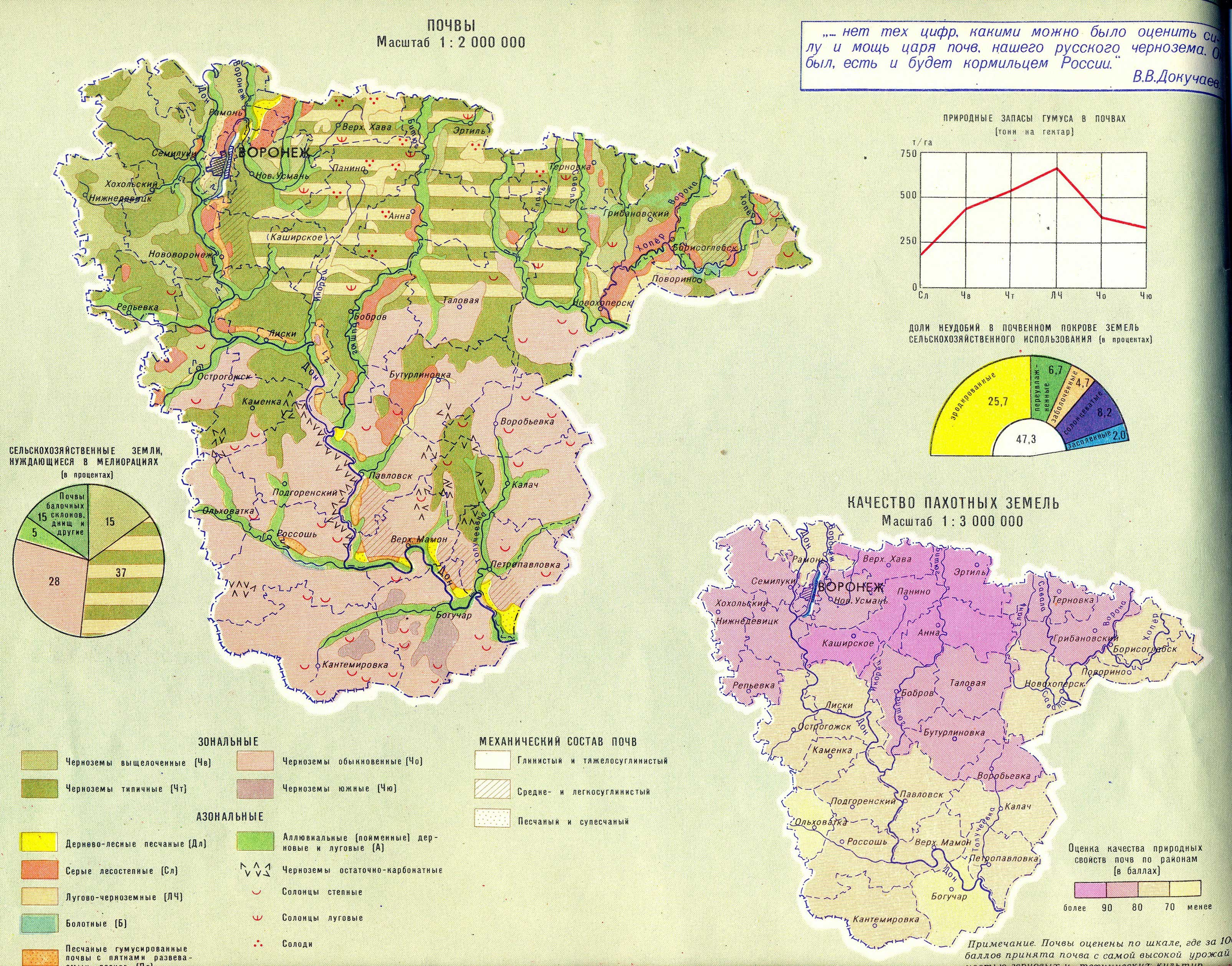 Лесные ресурсы воронежской области доклад 8876