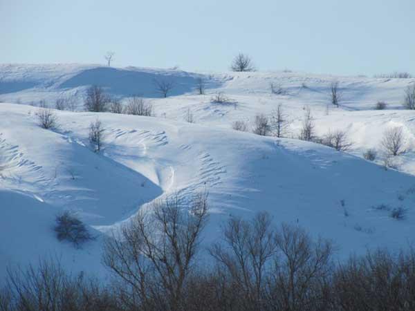 Зима в Воронежской области