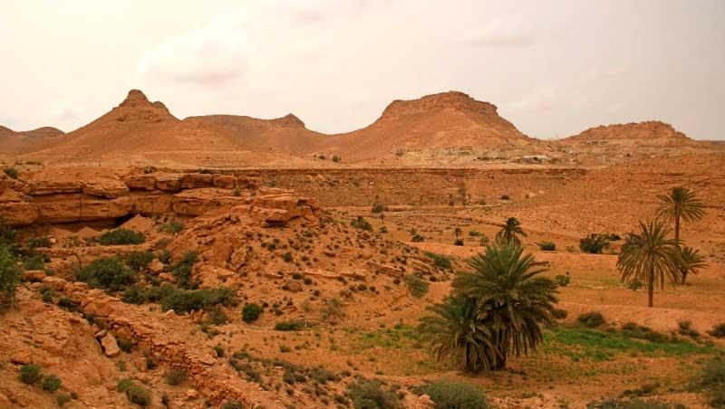 Тунис природы картинки