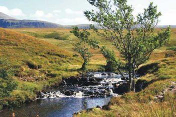 Небольшая речка в Шотландии